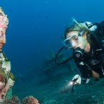 Popular Scuba Diving Events Around the World